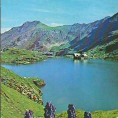 CPIB 15420 - CARTE POSTALA - LACUL BALEA