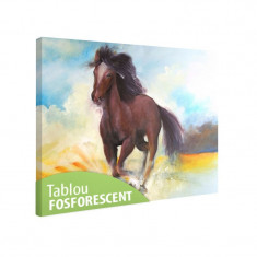 Tablou fosforescent Cal in galop