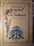 CALEA DESTINULUI-MARCU BEZA