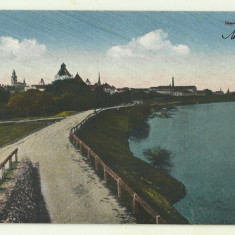Cp Arad : Muresul - circulata 1924, timbre, Fotografie