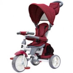 Tricicleta cu Sezut Reversibil Evo Visiniu, Colectia 2019