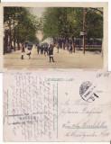 Sibiu  -Promenada Bretter-animata, Circulata, Printata