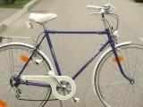 Bicicleta de oras - Alfira Fortuna - pentru barbati.