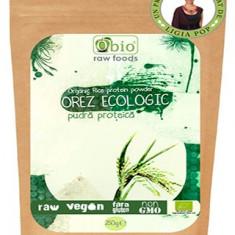 Proteina din orez pudra premium bio 250g