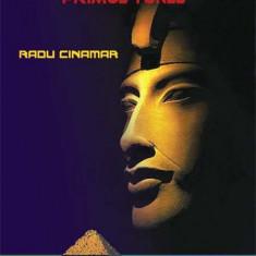 Cumpara ieftin Misterul din Egipt. Primul tunel