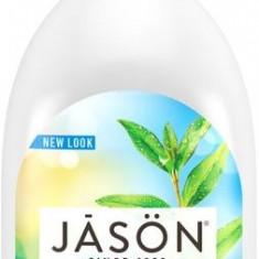 Sapun lichid anti-bacterian, cu Tea Tree, pentru fata si maini, 473 ml. Jason