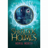 Tanarul Sherlock Holmes - Norul mortii/Andrew Lane
