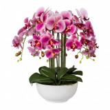 Cumpara ieftin Aranjament in ghiveci ceramic, Orhidee Phalenopsis Fucsia, H54 cm