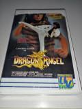 Dragon Angel -Actiune-Karate