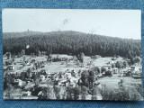 396 - Poiana Tapului, Vedere spre Zamora / cp RPR circulata 1965, Necirculata, Fotografie
