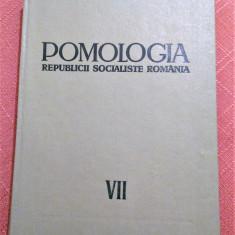 Pomologia R.S.R. Vol. VII. Capsunul, zmeurul, murul, coacazul...- T. Bordeianu, Alta editura, 1968