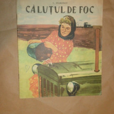 Calutul de foc an 1964/ilustratii/20pagini- I.Diakonov