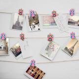 Set cleme decorative - model bufnita Best CarHome