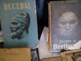 Carte unica despre marele cobducator Decebal scrisa de un englez  1921