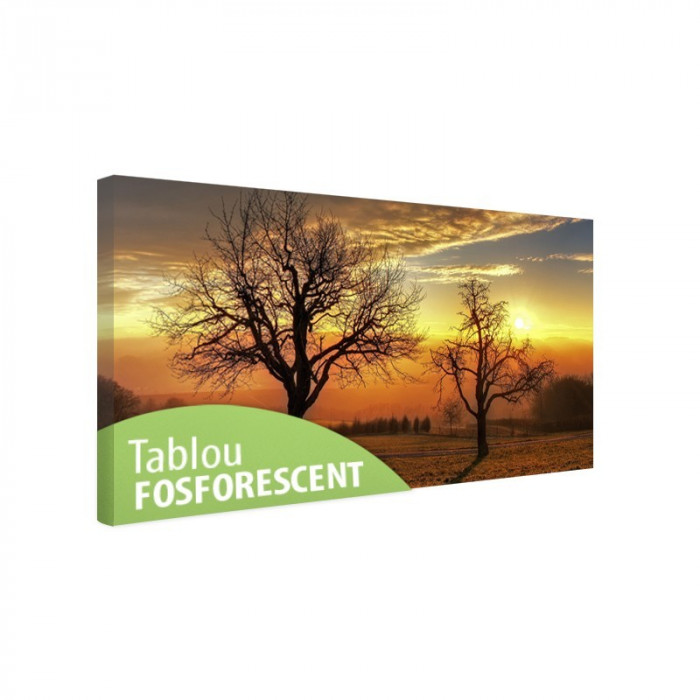 Tablou canvas fosforescent Trees in the sunset, 80x40 cm