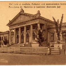 SV * Romania  IASI  *  FACULTATEA DE MEDICINA  si  INSTITUTUL ANATOMIC  JASSY, Necirculata, Fotografie