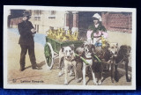 LAPTAREASA FLAMANDA , CARTE POSTALA ILUSTRATA , POLICROMA , CIRCULATA , DATATA 1912