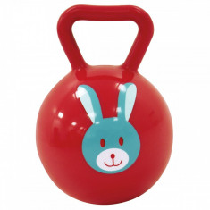 Zornaitoare minge pentru bebelusi Ludi Rosie