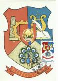 TSV* - MAXIMA BOTOSANI - STEMA JUDETULUI HERALDICA `80 STAMPILA 1