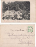 Sambata de Sus, Felsoszombatfalva ( Brasov)- Vedere-clasica, rara, Circulata, Printata