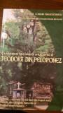 Cuvioasa fecioara mucenica Teodora din Peloponez     Monarh L.Gherontianou2007