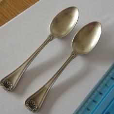 Lingurite argint -8008
