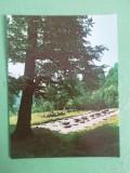 CCO - CALENDARE FOARTE VECHI - ANUL 1979 - NR 2