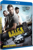 Zona de pericol / Brick Mansions - BLU-RAY Mania Film