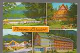 CPIB 17298 CARTE POSTALA - POIANA BRASOV. MOZAIC, Circulata, Fotografie