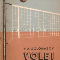Volei - V. A. Golomazov