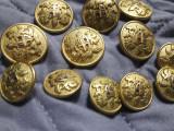 13 nasturi metalici aurii vechi metalici turnati Originali,7 mici+6 mari BLAZON