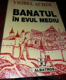 BANATUL IN EVUL MEDIU  VIOREL  ACHIM