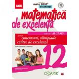 Mate excelenta pentru clasa a XII-a. Algebra - Dana Heuberger Coord., Vasile Pop