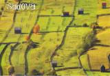 Carte postala Bucovina SV184 Sadova -Oleaca de geometrie