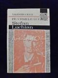 Pe Urmele Lui Stefan Luchian - Valentin Ciuca