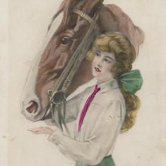 Carte postala cu cal interbelica
