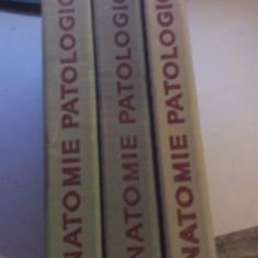 ANATOMIE PATOLOGICA 3 VOLUME sub redactia I. MORARIU