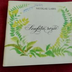 NICOLAE LABIS - SCUFITA ROSIE
