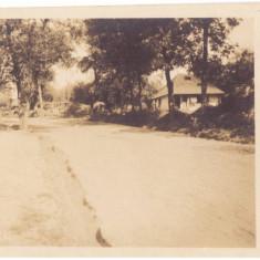 4782 - BIZIGHESTI, Vrancea, Romania - old postcard, real PHOTO - used - 1918
