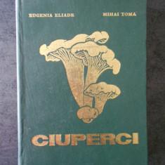 EUGENIA ELIADE, MIHAI TOMA - CIUPERCI