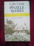 A2d CALIN GRUIA - PANZELE MAMEI