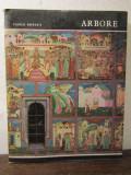 VASILE DRAGUT - DRAGOS COMAN MAESTRUL FRESCELOR DE LA ARBORE
