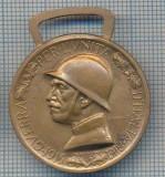 AX 64MEDALIA-RAZBOI PENTRU UNITATEA ITALIEI1915-1918-GUERRA PER L'UNITA D'ITALIA