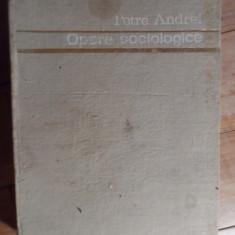 Opere Sociologice Vol.1 - Petre Andrei ,531705