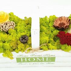 Cumpara ieftin Aranjament cu licheni naturali stabilizati, 32x15 cm