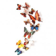 Fluturi 3D magnet, decoratiuni casa sau evenimente, set 12 bucati, culori reale
