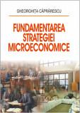 Cumpara ieftin Fundamentarea strategiei microeconomice
