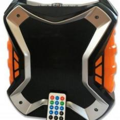 Boxa Portabila Orion OPBS-1766, Bluetooth, USB, Radio FM, AUX, Microfon fara fir, Card TF, Telecomanda (Negru)