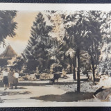 Carte poștală Gura Humorului / Suceava - 1961, Circulata, Printata