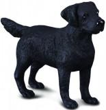 Figurina Labrador Retriever M Collecta